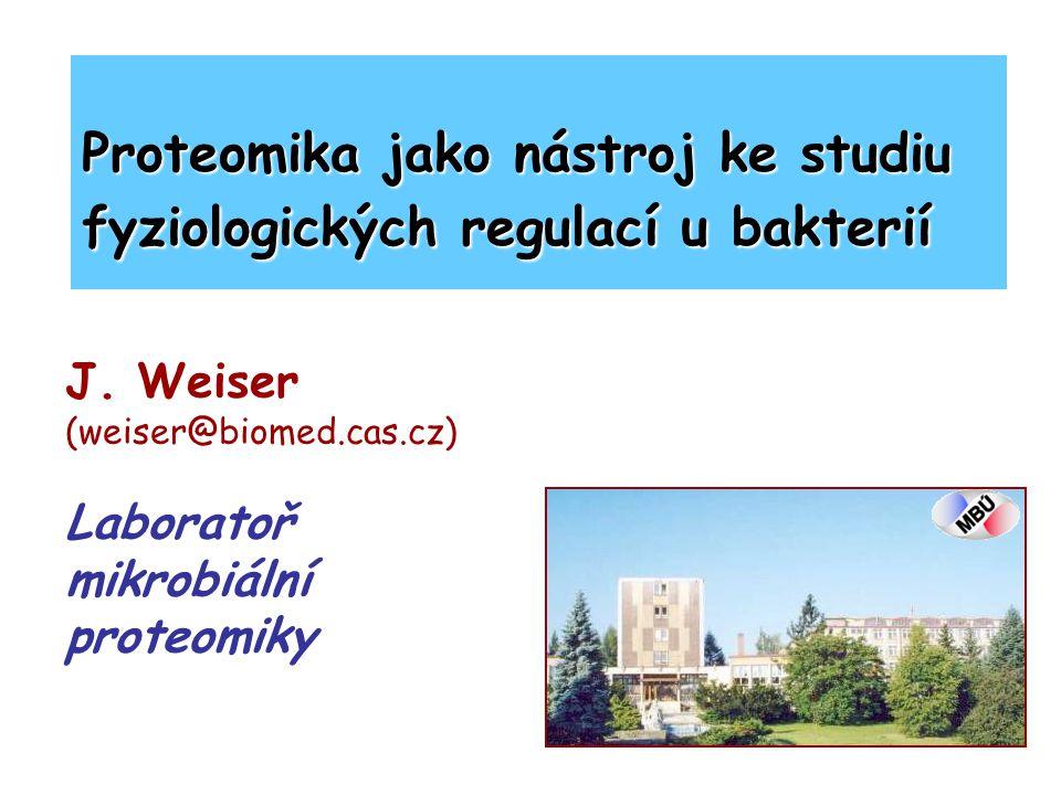 J. Weiser (weiser@biomed.cas.cz) Laboratoř mikrobiální proteomiky Proteomika jako nástroj ke studiu fyziologických regulací u bakterií
