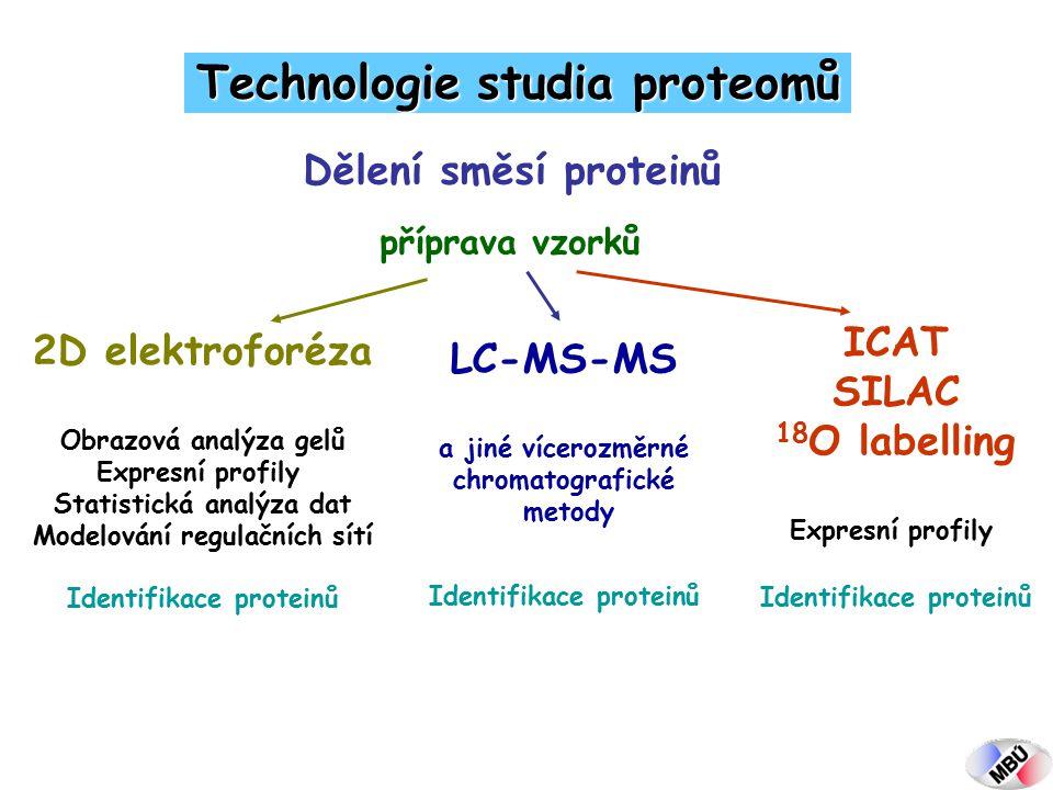 Dělení směsí proteinů Technologie studia proteomů příprava vzorků 2D elektroforéza Obrazová analýza gelů Expresní profily Statistická analýza dat Modelování regulačních sítí Identifikace proteinů LC-MS-MS a jiné vícerozměrné chromatografické metody Identifikace proteinů ICAT SILAC 18 O labelling Expresní profily Identifikace proteinů