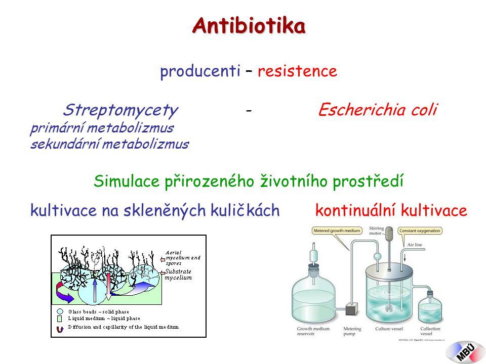Antibiotika producenti – resistence Streptomycety - Escherichia coli primární metabolizmus sekundární metabolizmus Simulace přirozeného životního prostředí kultivace na skleněných kuličkách kontinuální kultivace