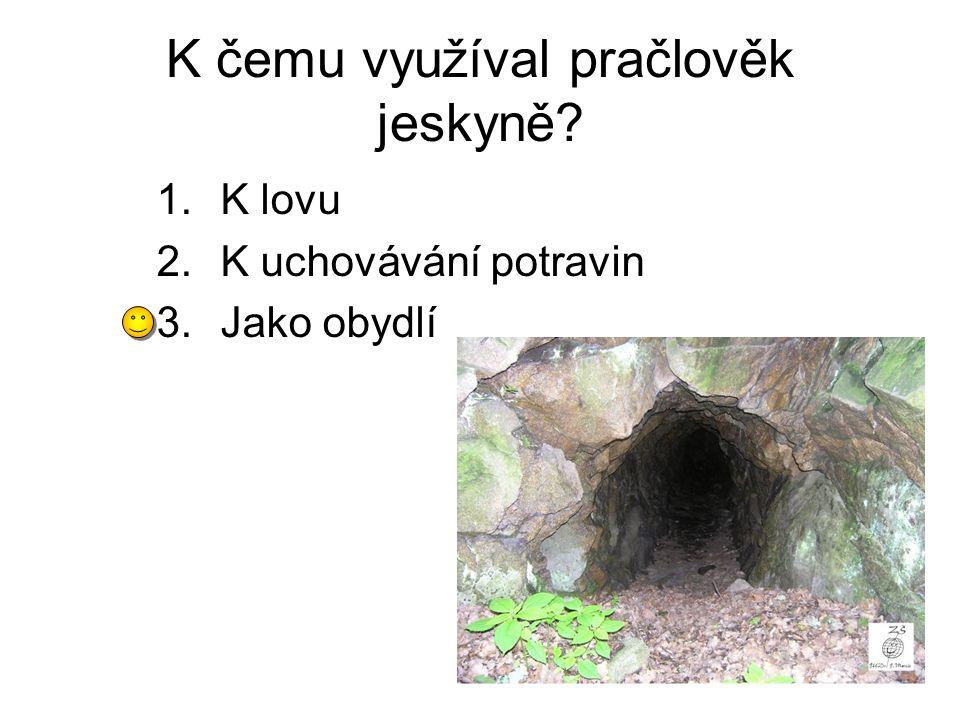 K čemu využíval pračlověk jeskyně? 1.K lovu 2.K uchovávání potravin 3.Jako obydlí