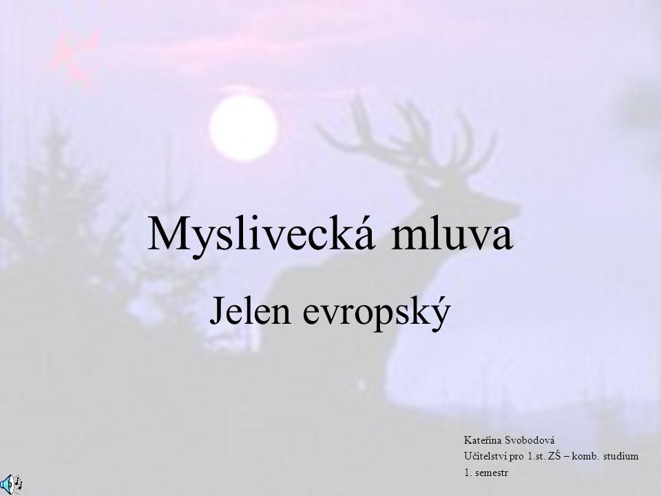 Myslivecká mluva Jelen evropský Kateřina Svobodová Učitelství pro 1.st. ZŠ – komb. studium 1. semestr