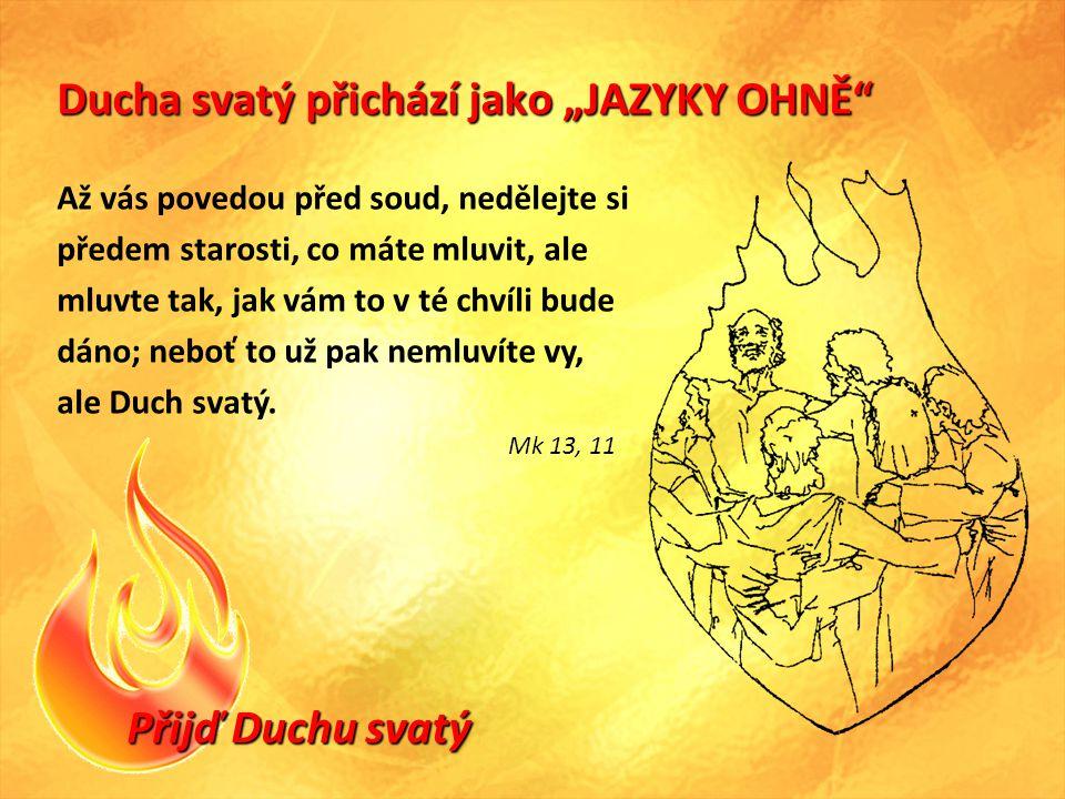 """Přijď Duchu svatý Ducha svatý přichází jako """"JAZYKY OHNĚ Až vás povedou před soud, nedělejte si předem starosti, co máte mluvit, ale mluvte tak, jak vám to v té chvíli bude dáno; neboť to už pak nemluvíte vy, ale Duch svatý."""
