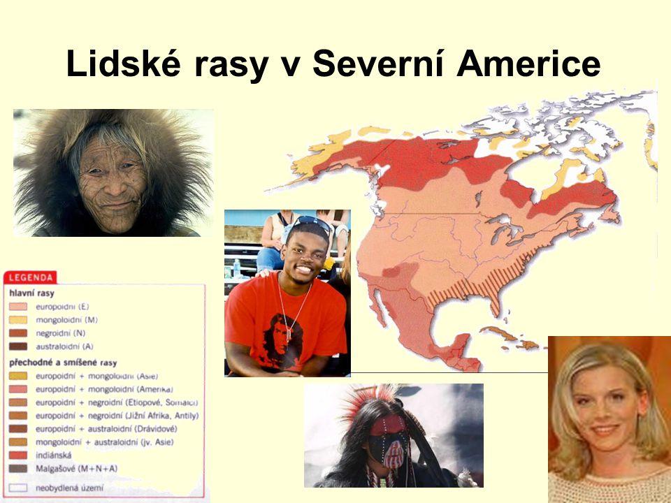 Lidské rasy v Severní Americe