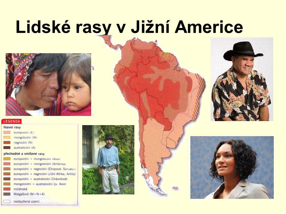 Lidské rasy v Jižní Americe