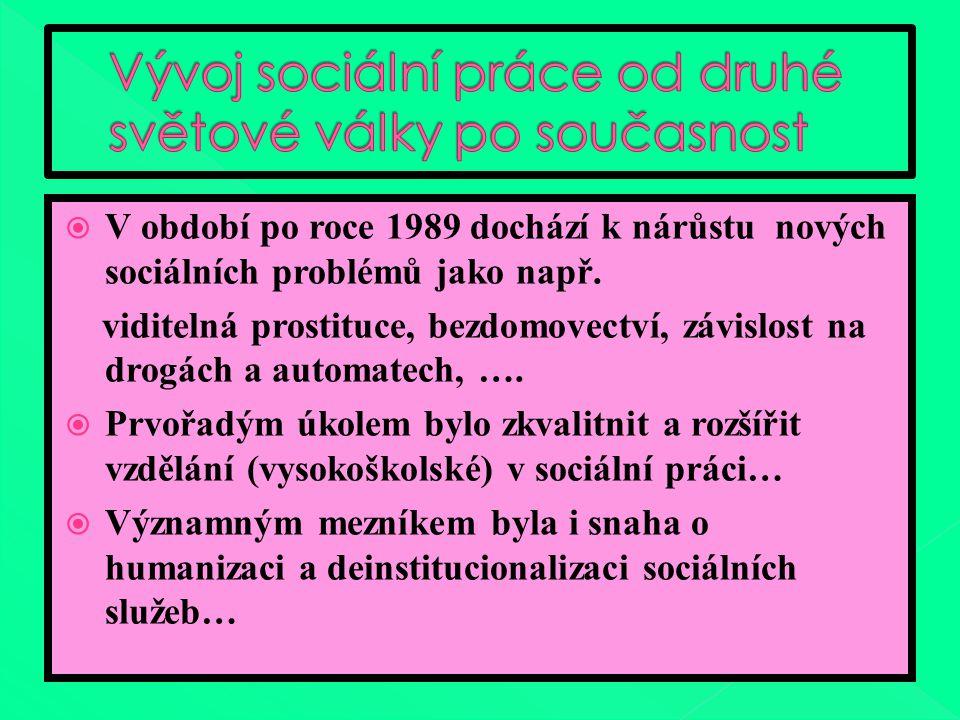  V období po roce 1989 dochází k nárůstu nových sociálních problémů jako např.
