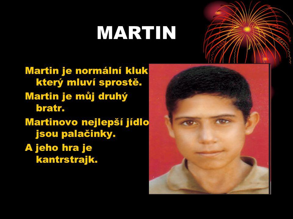 MARTIN Martin je normální kluk který mluví sprostě. Martin je můj druhý bratr. Martinovo nejlepší jídlo jsou palačinky. A jeho hra je kantrstrajk.