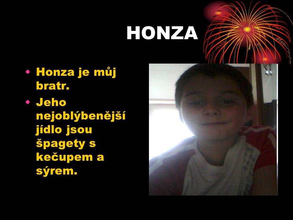 HONZA Honza je můj bratr. Jeho nejoblýbenější jídlo jsou špagety s kečupem a sýrem.