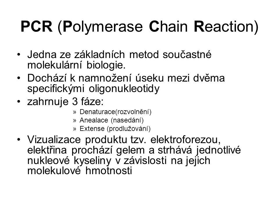 PCR (Polymerase Chain Reaction) Jedna ze základních metod součastné molekulární biologie. Dochází k namnožení úseku mezi dvěma specifickými oligonukle