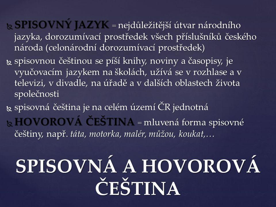  SPISOVNÝ JAZYK = nejdůležitější útvar národního jazyka, dorozumívací prostředek všech příslušníků českého národa (celonárodní dorozumívací prostřede
