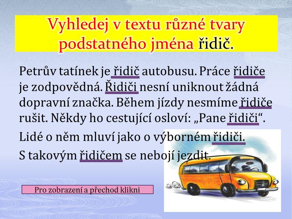 Petrův tatínek je řidič autobusu.Práce řidiče je zodpovědná.