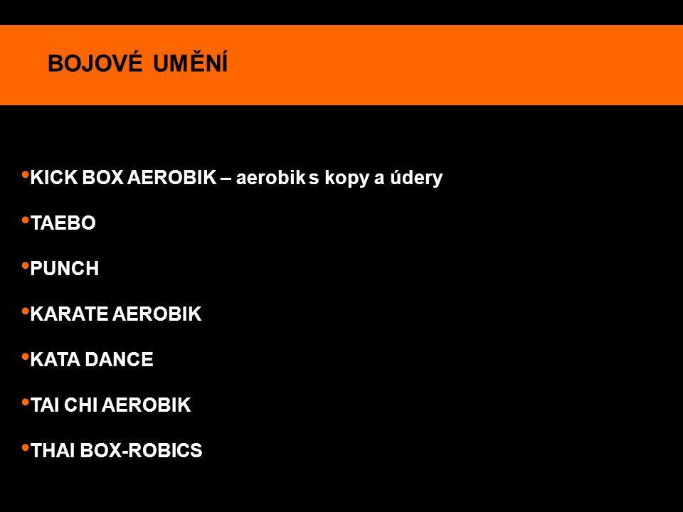 BOJOVÉ UMĚNÍ KICK BOX AEROBIK – aerobik s kopy a údery TAEBO PUNCH KARATE AEROBIK KATA DANCE TAI CHI AEROBIK THAI BOX-ROBICS