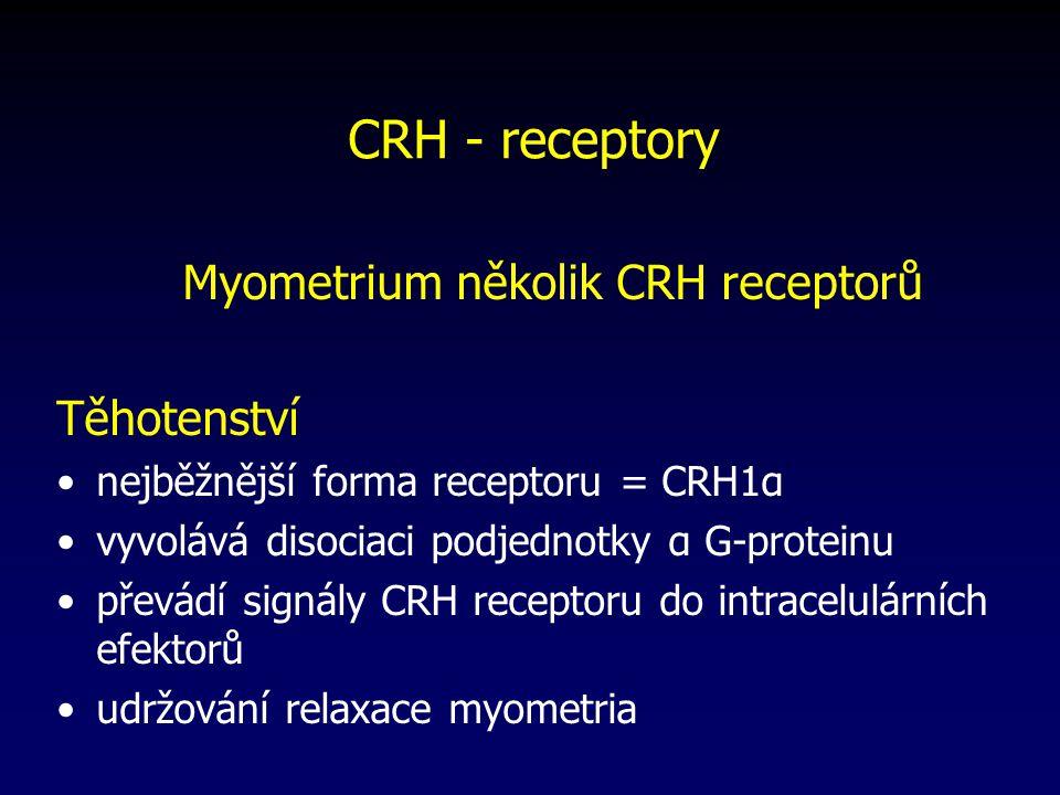 CRH - receptory Myometrium několik CRH receptorů Těhotenství nejběžnější forma receptoru = CRH1α vyvolává disociaci podjednotky α G-proteinu převádí signály CRH receptoru do intracelulárních efektorů udržování relaxace myometria