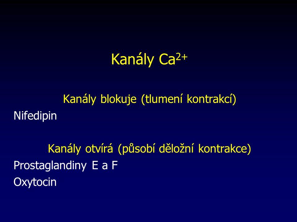 Kanály Ca 2+ Kanály blokuje (tlumení kontrakcí) Nifedipin Kanály otvírá (působí děložní kontrakce) Prostaglandiny E a F Oxytocin