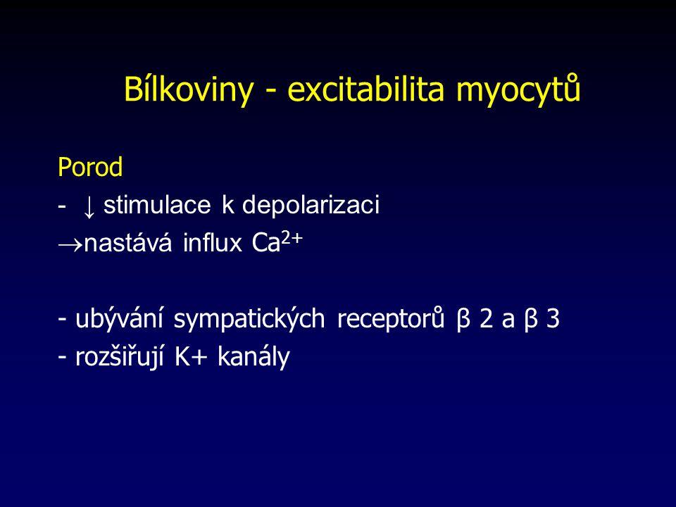 Bílkoviny - excitabilita myocytů Porod -↓ stimulace k depolarizaci  nastává influx Ca 2+ - ubývání sympatických receptorů β 2 a β 3 - rozšiřují K+ kanály