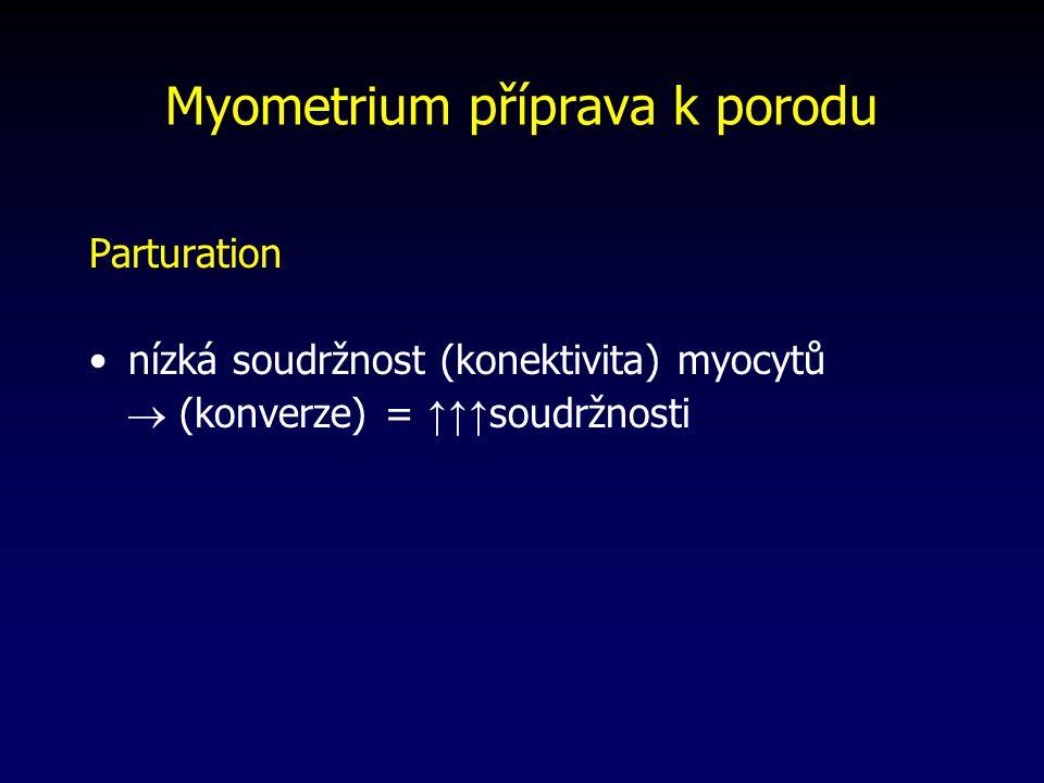 Myometrium příprava k porodu Parturation nízká soudržnost (konektivita) myocytů  (konverze) = ↑↑↑ soudržnosti