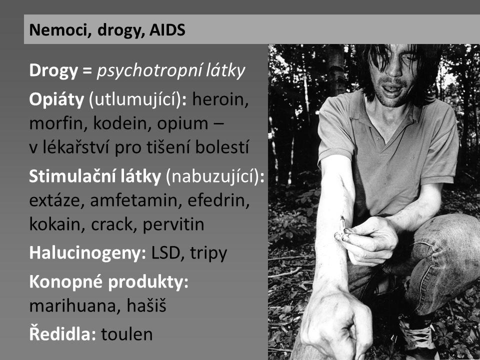Drogy = psychotropní látky Opiáty (utlumující): heroin, morfin, kodein, opium – v lékařství pro tišení bolestí Stimulační látky (nabuzující): extáze, amfetamin, efedrin, kokain, crack, pervitin Halucinogeny: LSD, tripy Konopné produkty: marihuana, hašiš Ředidla: toulen Nemoci, drogy, AIDS