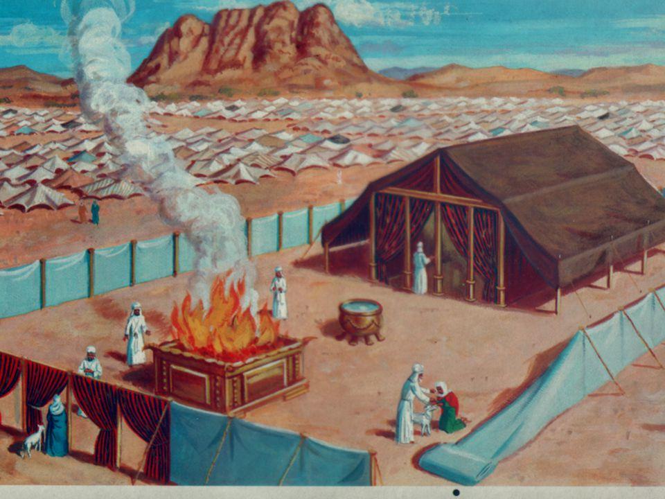 9 Velký oltář Leviticus 5:18 Přivede ke knězi z bravu berana bez vady, jehož cenu určíš, jako oběť za vinu.
