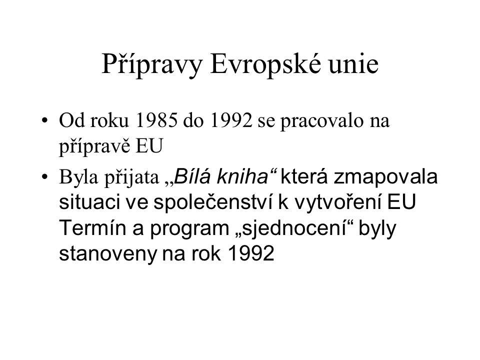 """Přípravy Evropské unie Od roku 1985 do 1992 se pracovalo na přípravě EU Byla přijata """" Bílá kniha"""" která zmapovala situaci ve společenství k vytvoření"""