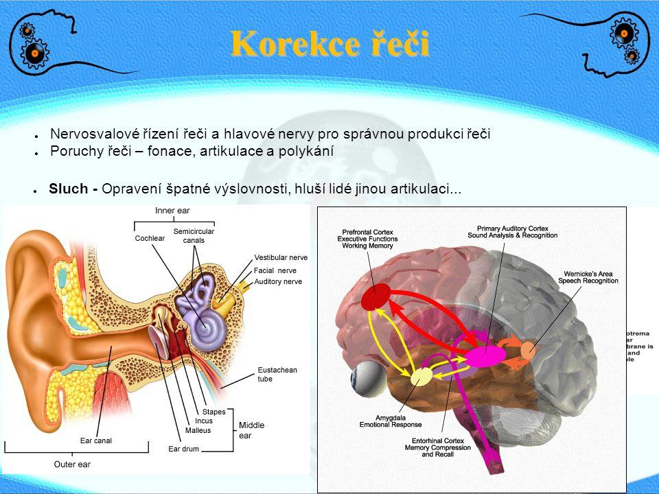 Korekce řeči ● Sluch - Opravení špatné výslovnosti, hluší lidé jinou artikulaci... ● Nervosvalové řízení řeči a hlavové nervy pro správnou produkci ře