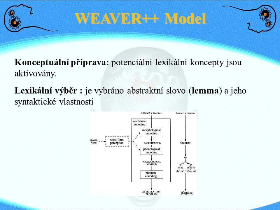 WEAVER++ Model Konceptuální příprava: potenciální lexikální koncepty jsou aktivovány. Lexikální výběr : je vybráno abstraktní slovo (lemma) a jeho syn