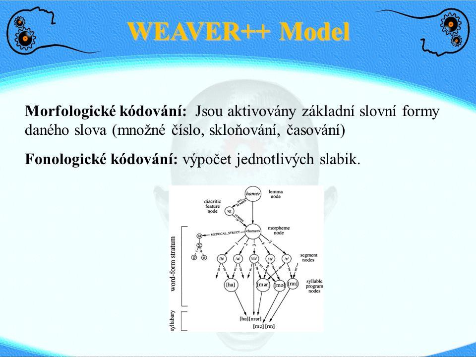 WEAVER++ Model Morfologické kódování: Jsou aktivovány základní slovní formy daného slova (množné číslo, skloňování, časování) Fonologické kódování: vý