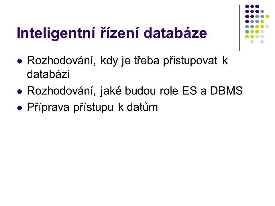 Inteligentní řízení databáze Rozhodování, kdy je třeba přistupovat k databázi Rozhodování, jaké budou role ES a DBMS Příprava přístupu k datům