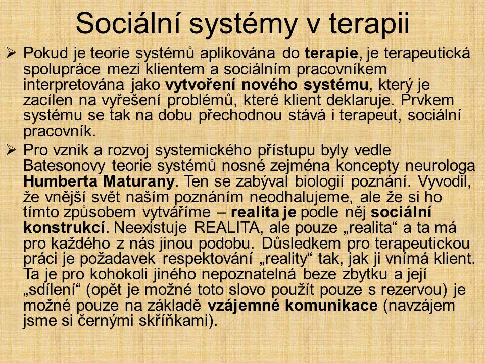 Sociální systémy v terapii  Pokud je teorie systémů aplikována do terapie, je terapeutická spolupráce mezi klientem a sociálním pracovníkem interpret