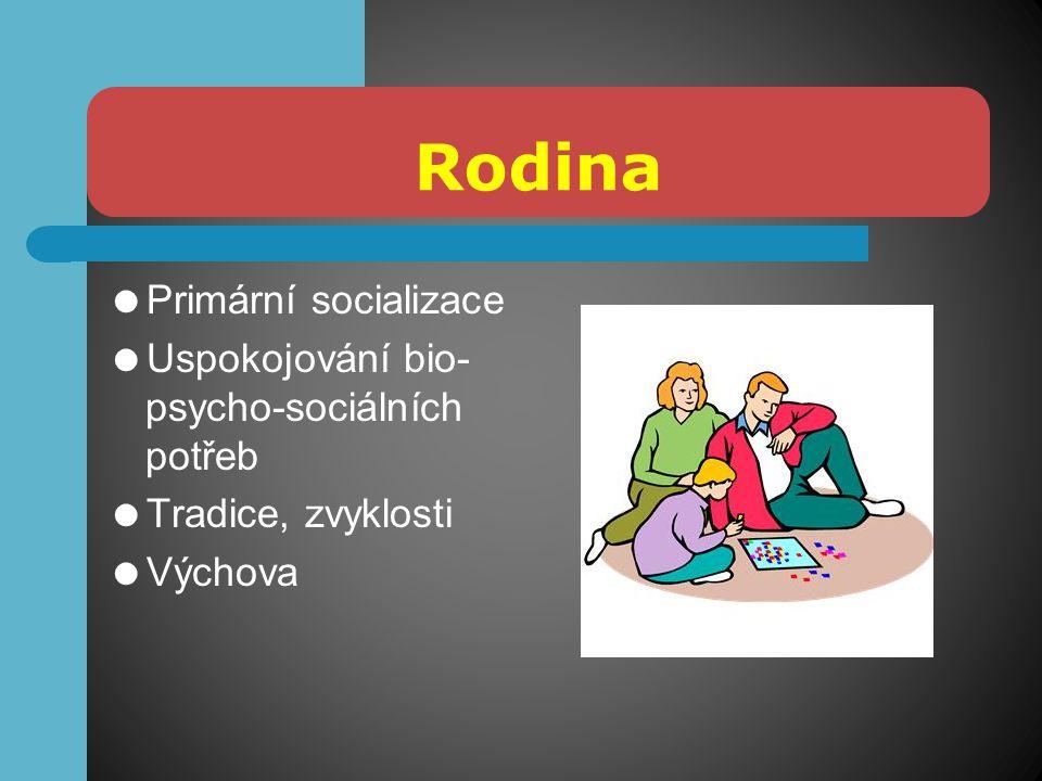 Rodina  Primární socializace  Uspokojování bio- psycho-sociálních potřeb  Tradice, zvyklosti  Výchova