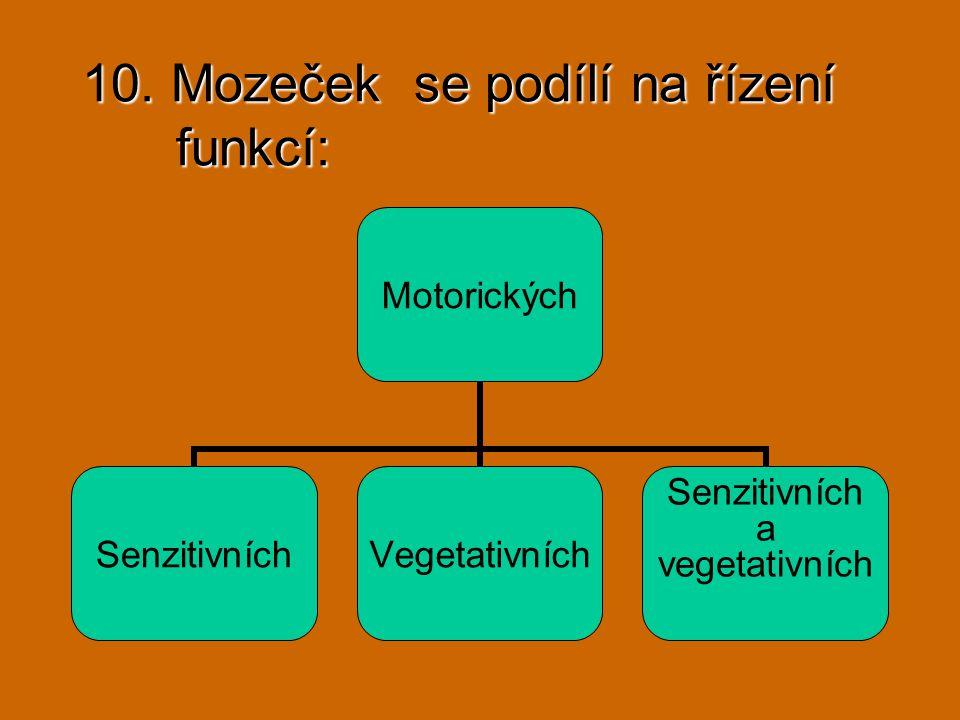 10. Mozeček se podílí na řízení funkcí: Motorických SenzitivníchVegetativních Senzitivních a vegetativních
