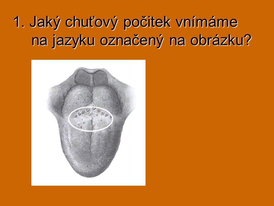 fasciculus gracilis fasciculus cuneatus 1.………….....…… 3.