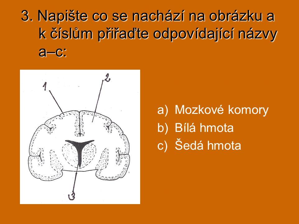 3. Napište co se nachází na obrázku a k číslům přiřaďte odpovídající názvy a–c: a)Mozkové komory b)Bílá hmota c)Šedá hmota 1c, 2b, 3a Příčný řez mozke