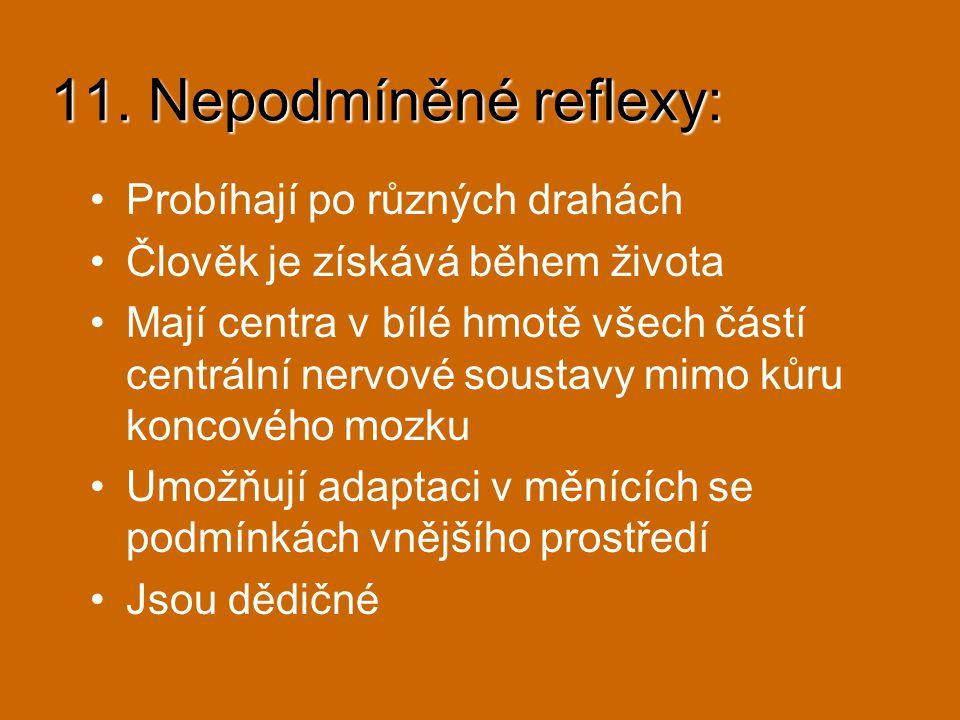 11. Nepodmíněné reflexy: Probíhají po různých drahách Člověk je získává během života Mají centra v bílé hmotě všech částí centrální nervové soustavy m