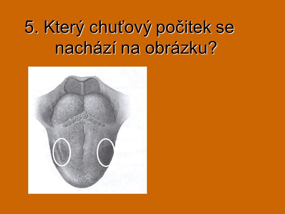 6. Jako útrobní mozek je někdy označován: Hypotalamus AdenohypofýzaMozečekNeurohypofýza