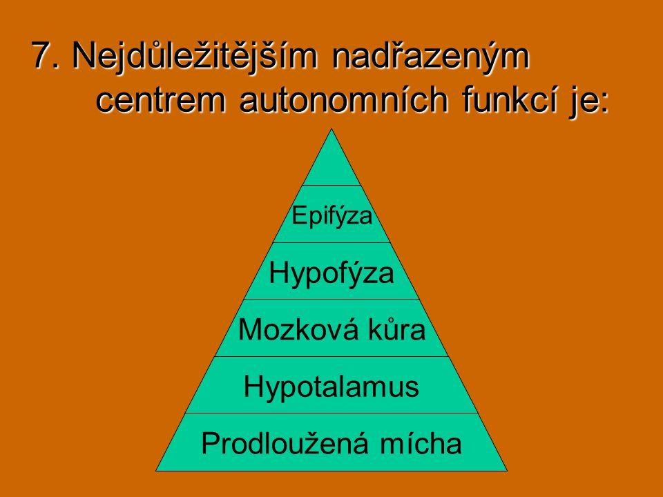 7. Nejdůležitějším nadřazeným centrem autonomních funkcí je: Epifýza Hypofýza Mozková kůra Hypotalamus Prodloužená mícha