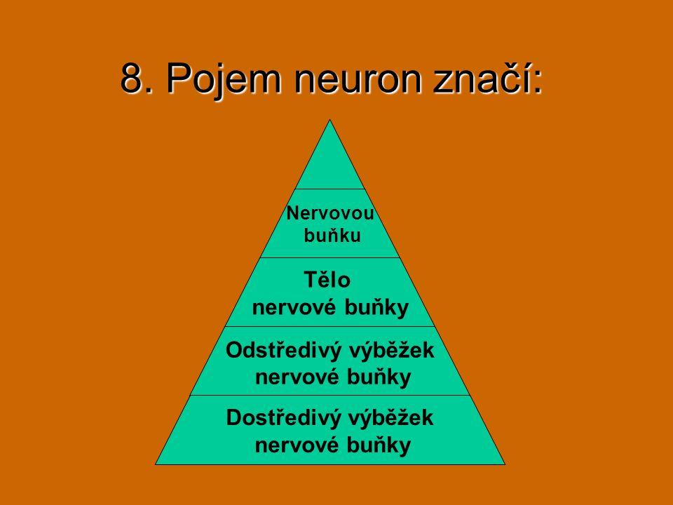 8. Pojem neuron značí: Nervovou buňku Tělo nervové buňky Odstředivý výběžek nervové buňky Dostředivý výběžek nervové buňky