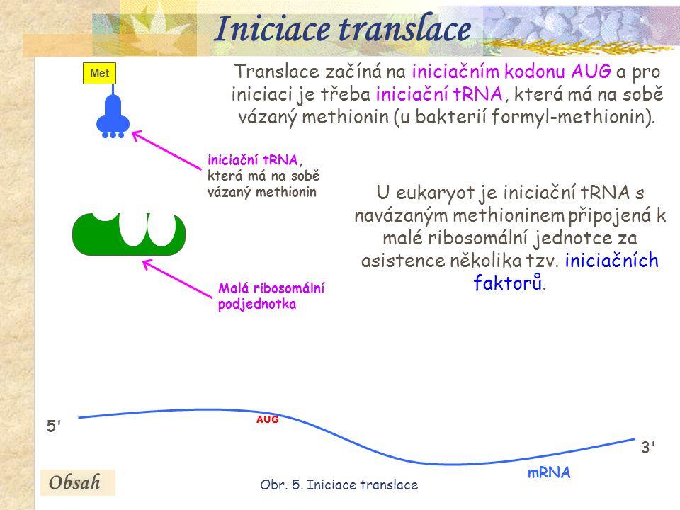 15 Translace začíná na iniciačním kodonu AUG a pro iniciaci je třeba iniciační tRNA, která má na sobě vázaný methionin (u bakterií formyl-methionin).