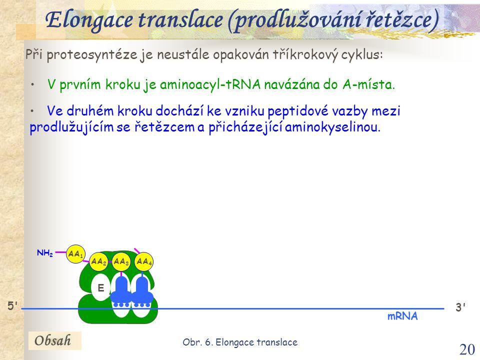 20 Při proteosyntéze je neustále opakován tříkrokový cyklus: V prvním kroku je aminoacyl-tRNA navázána do A-místa.