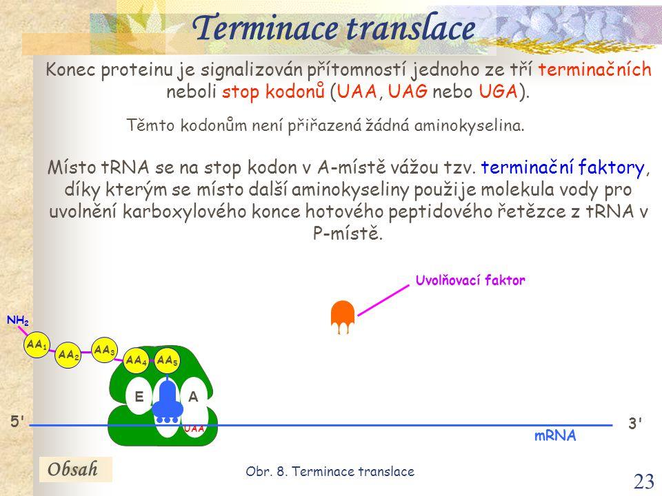 23 Konec proteinu je signalizován přítomností jednoho ze tří terminačních neboli stop kodonů (UAA, UAG nebo UGA).