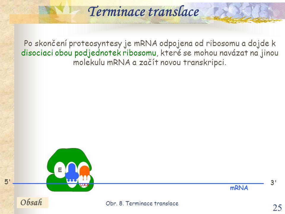 25 E P A 3 mRNA 5 UAA Po skončení proteosyntesy je mRNA odpojena od ribosomu a dojde k disociaci obou podjednotek ribosomu, které se mohou navázat na jinou molekulu mRNA a začít novou transkripci.