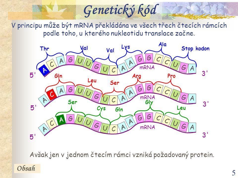 6 Druhý nukleotid UCAG První nukleotid U UUU fenyalaninUCU serinUAU tyrosinUGU cysteinU Třetí nukleotid UUC fenyalaninUCC serinUAC tyrosinUGC cysteinC UUA leucinUCA serinUAA stop kodonUGA stop kodonA UUG leucinUCG serinUAG stop kodonUGG tryptofanG C CUU leucinCCU prolinCAU histidinCGU argininU CUC leucinCCC prolinCAC histidinCGC argininC CUA leucinCCA prolinCAA glutaminCGA argininA CUG leucinCCG prolinCAG glutaminCGG argininG A AUU isoleucinACU threoninAAU asparaginAGU serinU AUC isoleucinACC threoninAAC asparaginAGC serinC AUA isoleucinACA threoninAAA lysinAGA argininA AUG methioninACG threoninAAG lysinAGG argininG G GUU valinGCU alaninGAU kyselina asparagováGGU glycinU GUC valinGCC alaninGAC kyselina asparagováGGC glycinC GUA valinGCA alaninGAA kyselina glutamováGGA glycinA GUG valinGCG alaninGAG kyselina glutamováGGG glycinG Iniciační kodon Terminační kodony Obsah Tab.