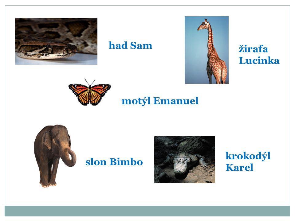 had Sam žirafa Lucinka motýl Emanuel slon Bimbo krokodýl Karel