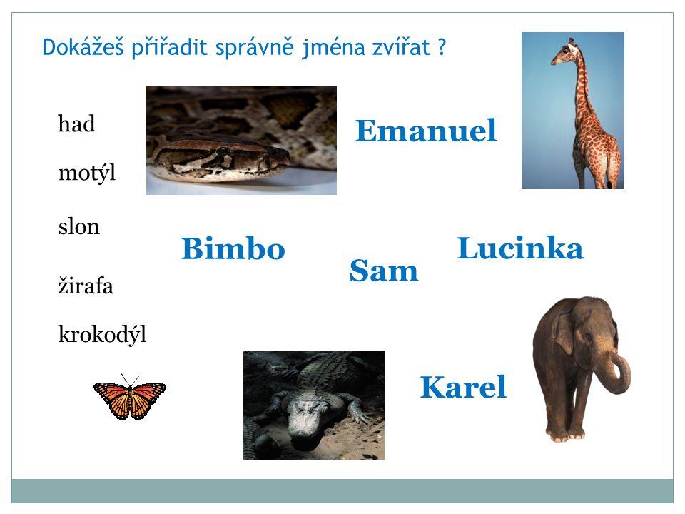 Dokážeš přiřadit správně jména zvířat .