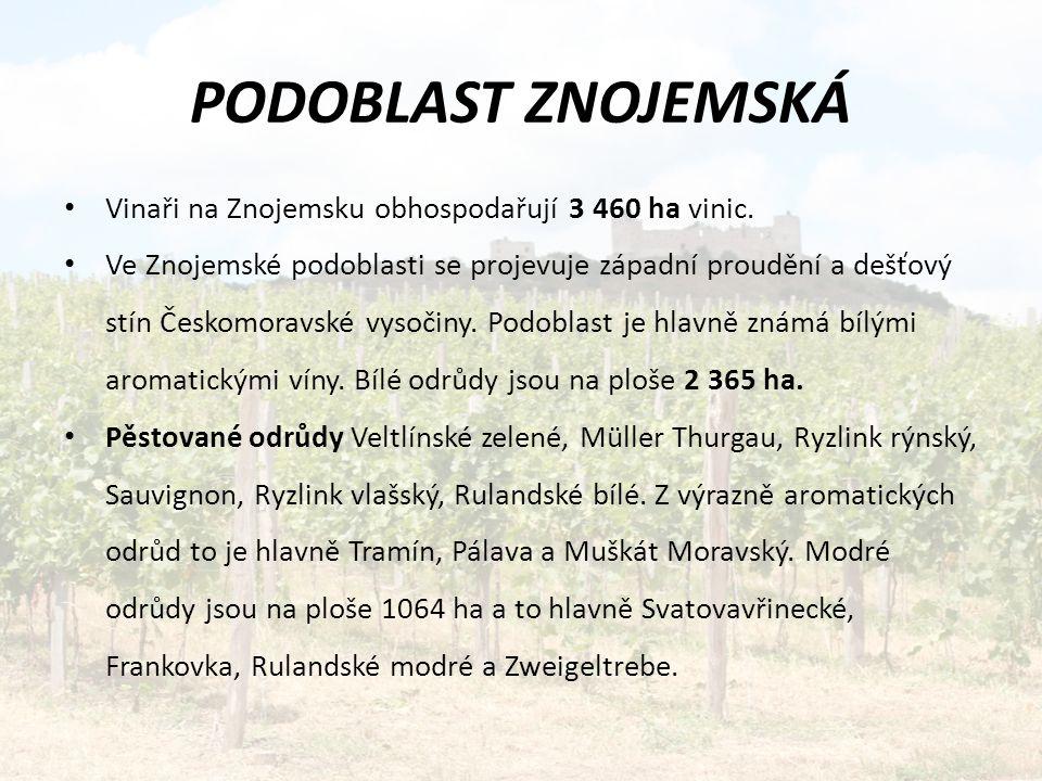 Vinaři na Znojemsku obhospodařují 3 460 ha vinic.