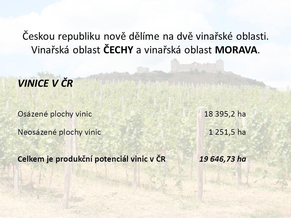 Českou republiku nově dělíme na dvě vinařské oblasti.
