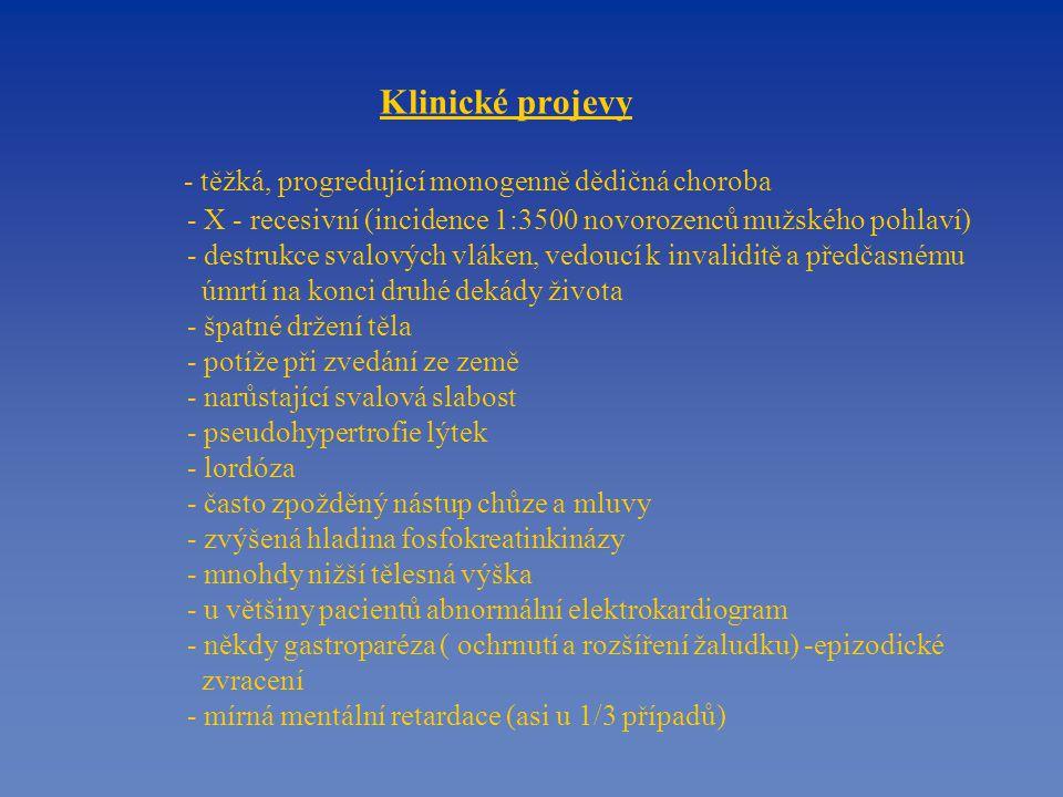 Klinické projevy - těžká, progredující monogenně dědičná choroba - X - recesivní (incidence 1:3500 novorozenců mužského pohlaví) - destrukce svalových vláken, vedoucí k invaliditě a předčasnému úmrtí na konci druhé dekády života - špatné držení těla - potíže při zvedání ze země - narůstající svalová slabost - pseudohypertrofie lýtek - lordóza - často zpožděný nástup chůze a mluvy - zvýšená hladina fosfokreatinkinázy - mnohdy nižší tělesná výška - u většiny pacientů abnormální elektrokardiogram - někdy gastroparéza ( ochrnutí a rozšíření žaludku) -epizodické zvracení - mírná mentální retardace (asi u 1/3 případů)