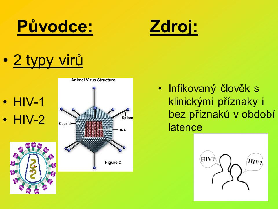 Původce: Zdroj: 2 typy virů HIV-1 HIV-2 Infikovaný člověk s klinickými příznaky i bez příznaků v období latence