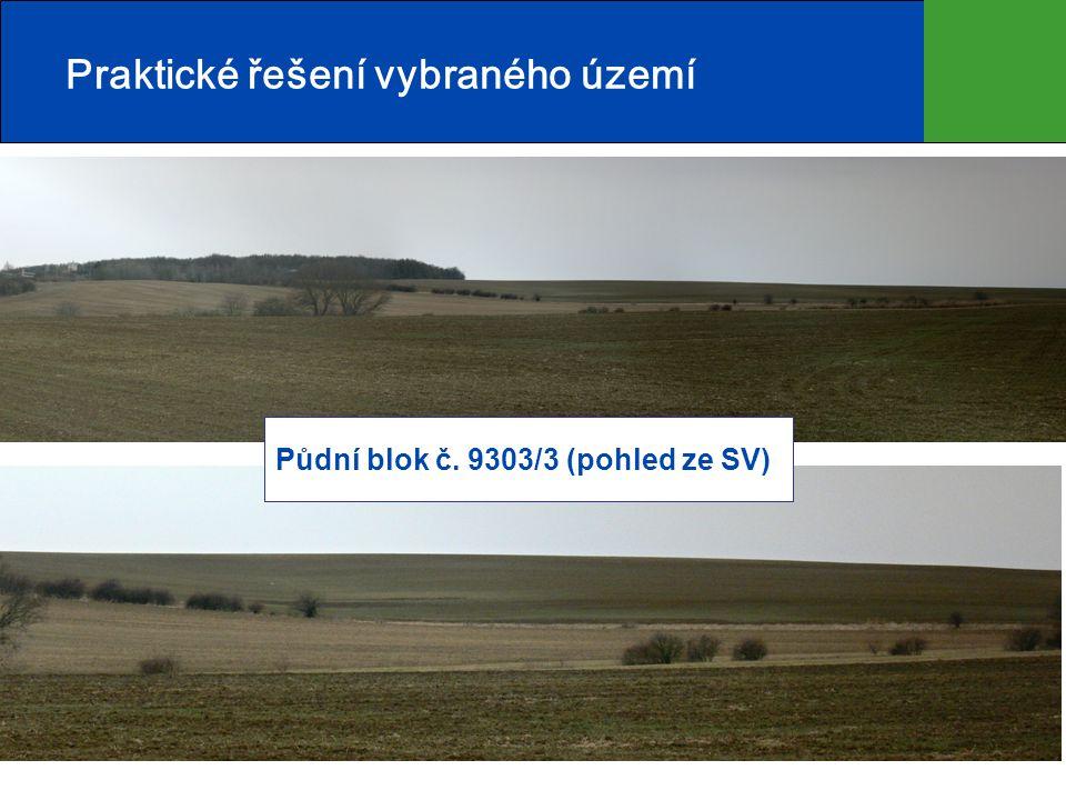 6 Praktické řešení vybraného území Půdní blok č. 9303/3 (pohled ze SV)