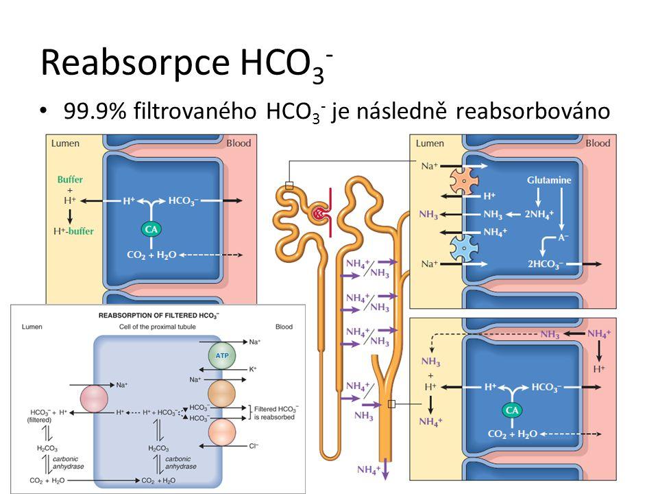1.Zvýšený příjem nebo produkce vázaného H + 2. Ztráta HCO 3 - 3.