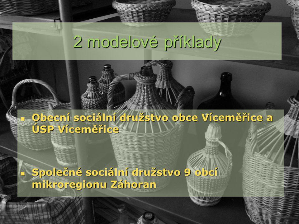 Obecní sociální družstvo obce Víceměřice a ÚSP Víceměřice Obecní sociální družstvo obce Víceměřice a ÚSP Víceměřice Společné sociální družstvo 9 obcí