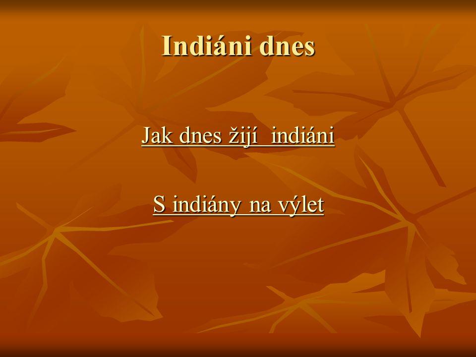Indiáni dnes Jak dnes žijí indiáni Jak dnes žijí indiáni S indiány na výlet S indiány na výlet